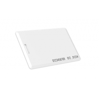 1-WIRE RFID карта