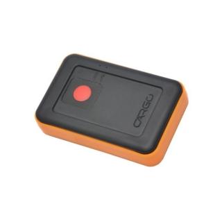 Внешний вид GPS терминала CARGO Unit